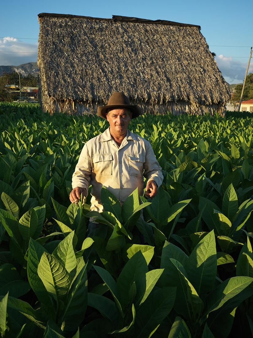 Vinales-Cuba-Hasselblad-2-18-_B_9999280.jpg