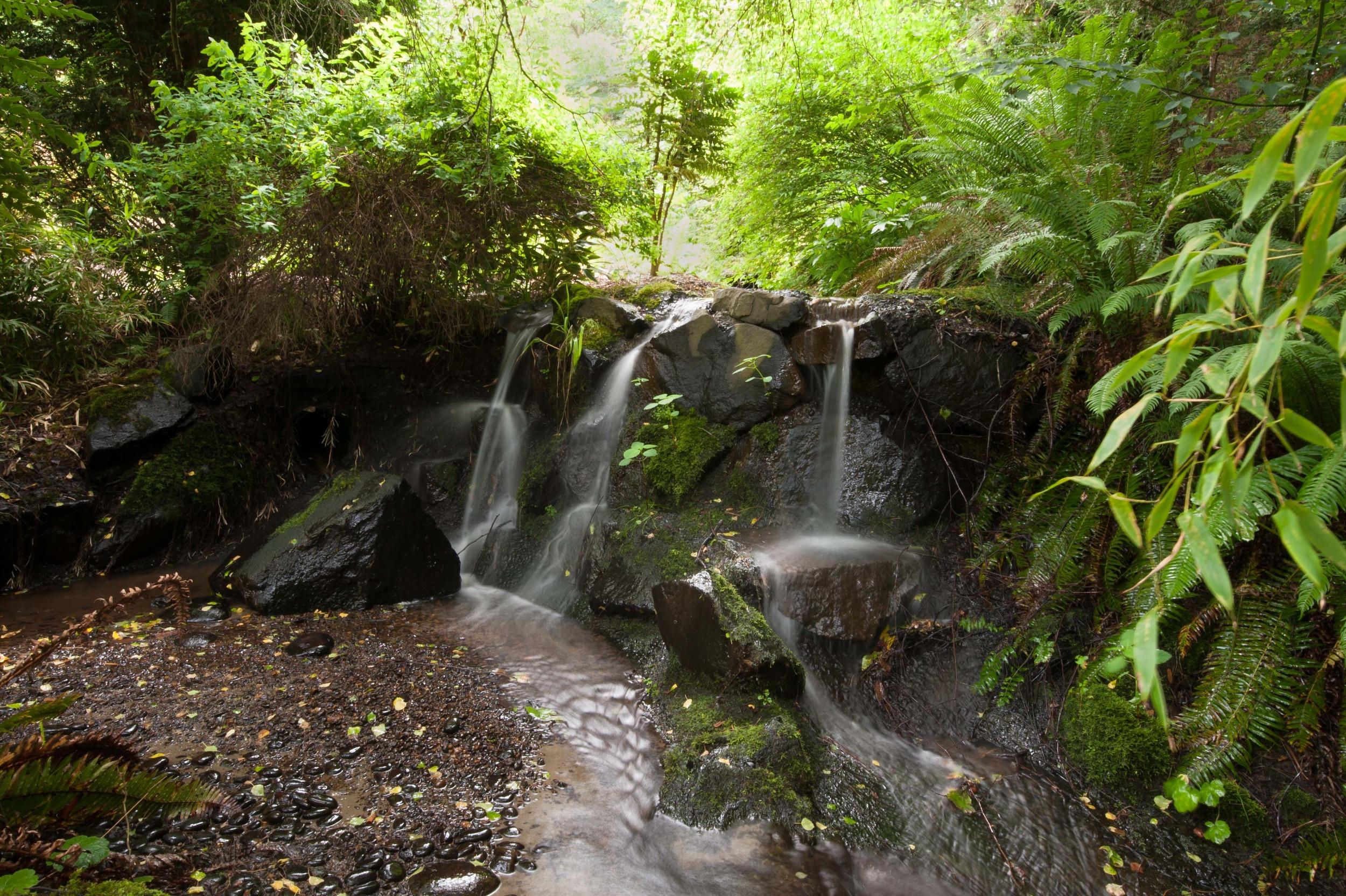 waterfall slow.jpg