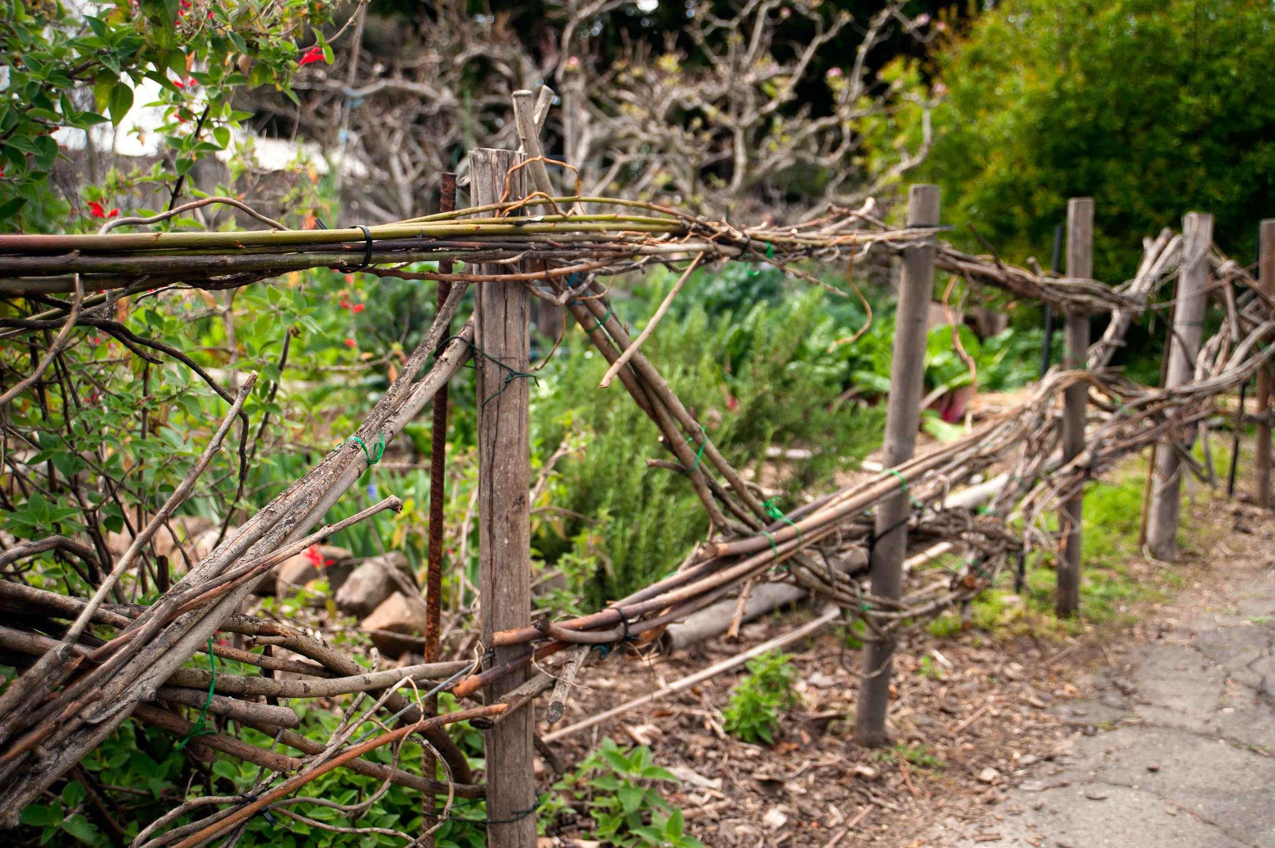 twig-fence.jpg