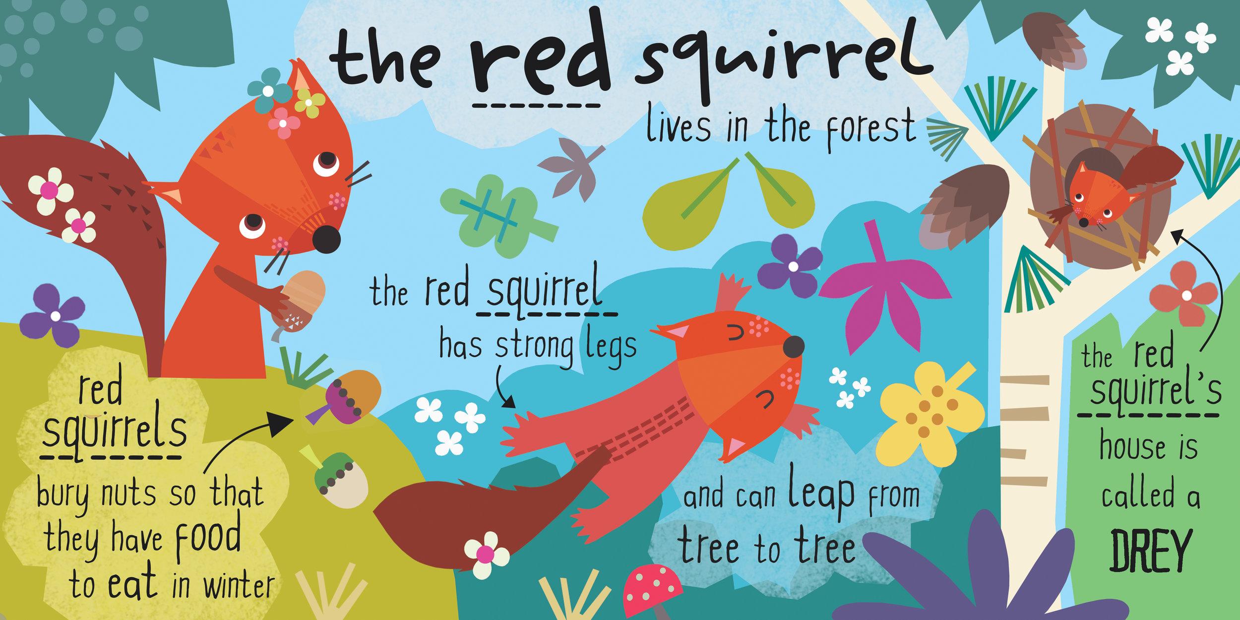 squirrel spread flat.jpg