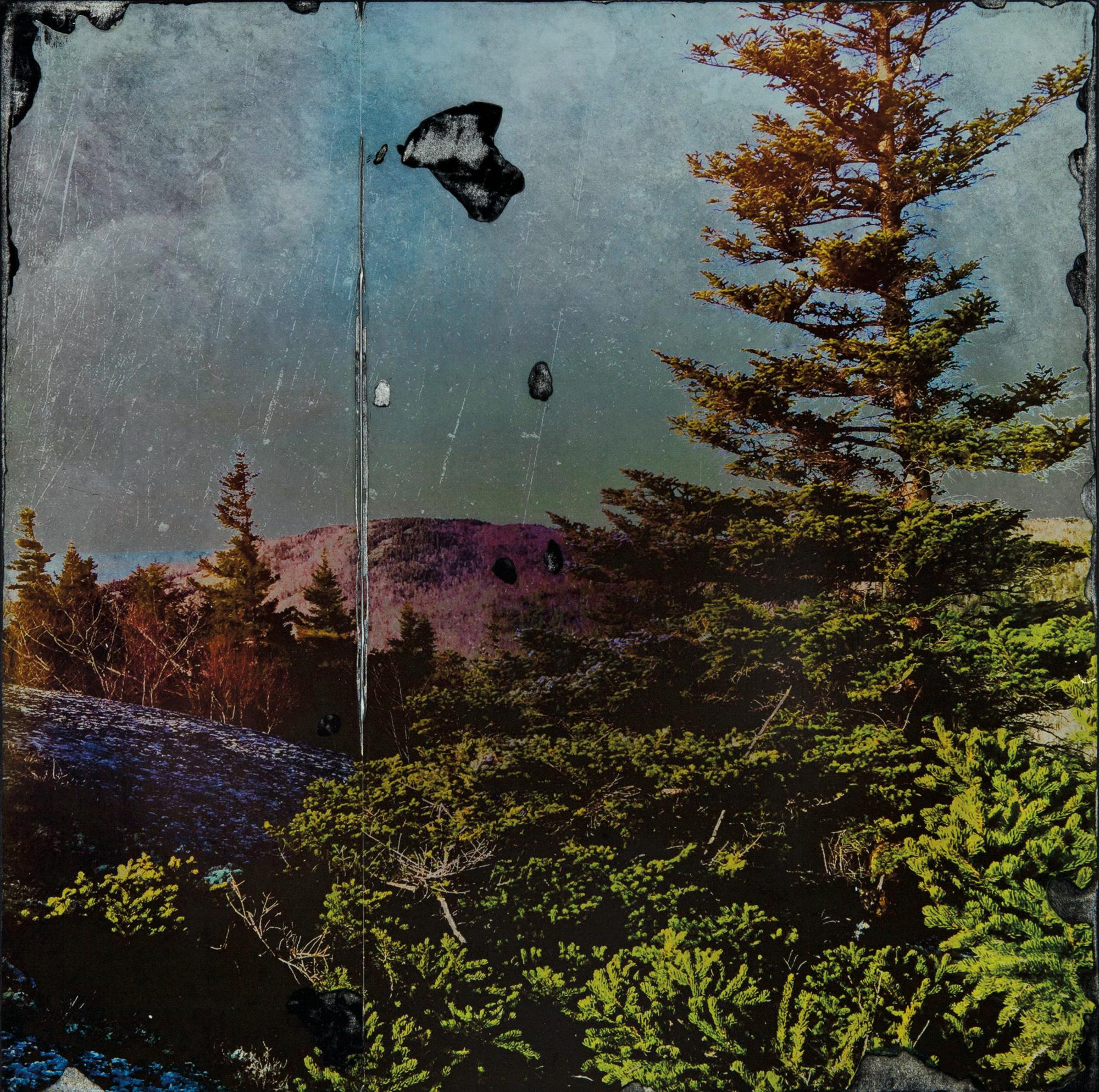 Laurence-Moon Tone_rev2.jpg