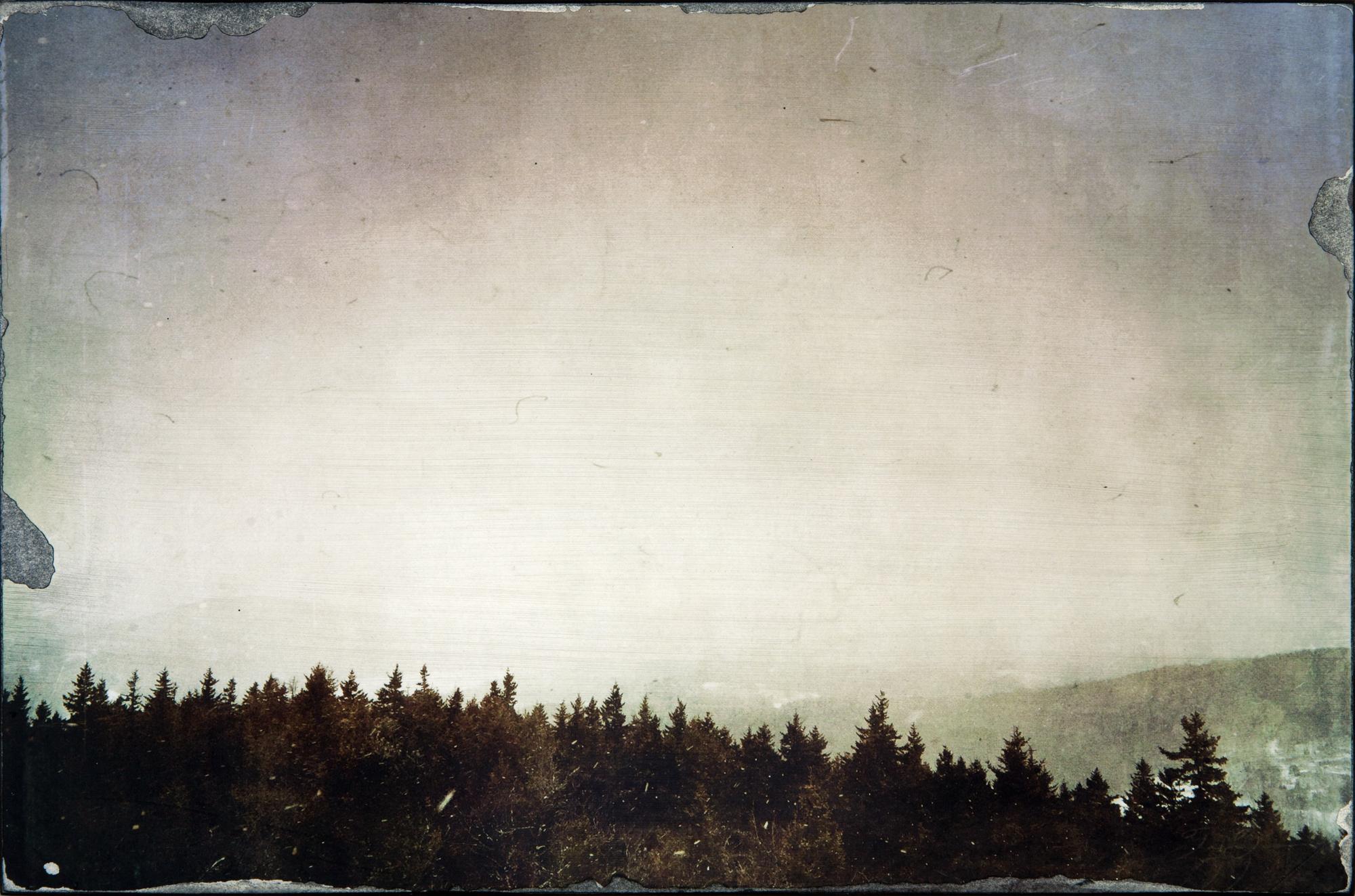 Laurence-Same View.jpg