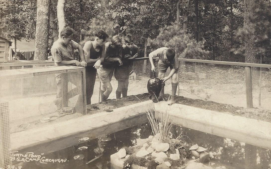 Checaugau Turtle Pond 1929