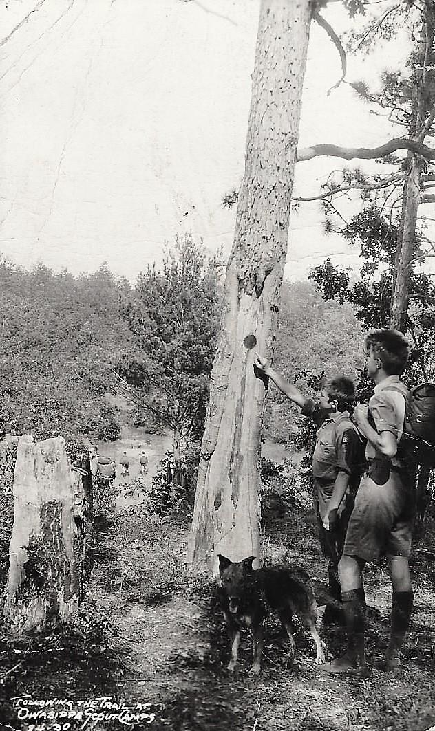Trail Postcard 1938