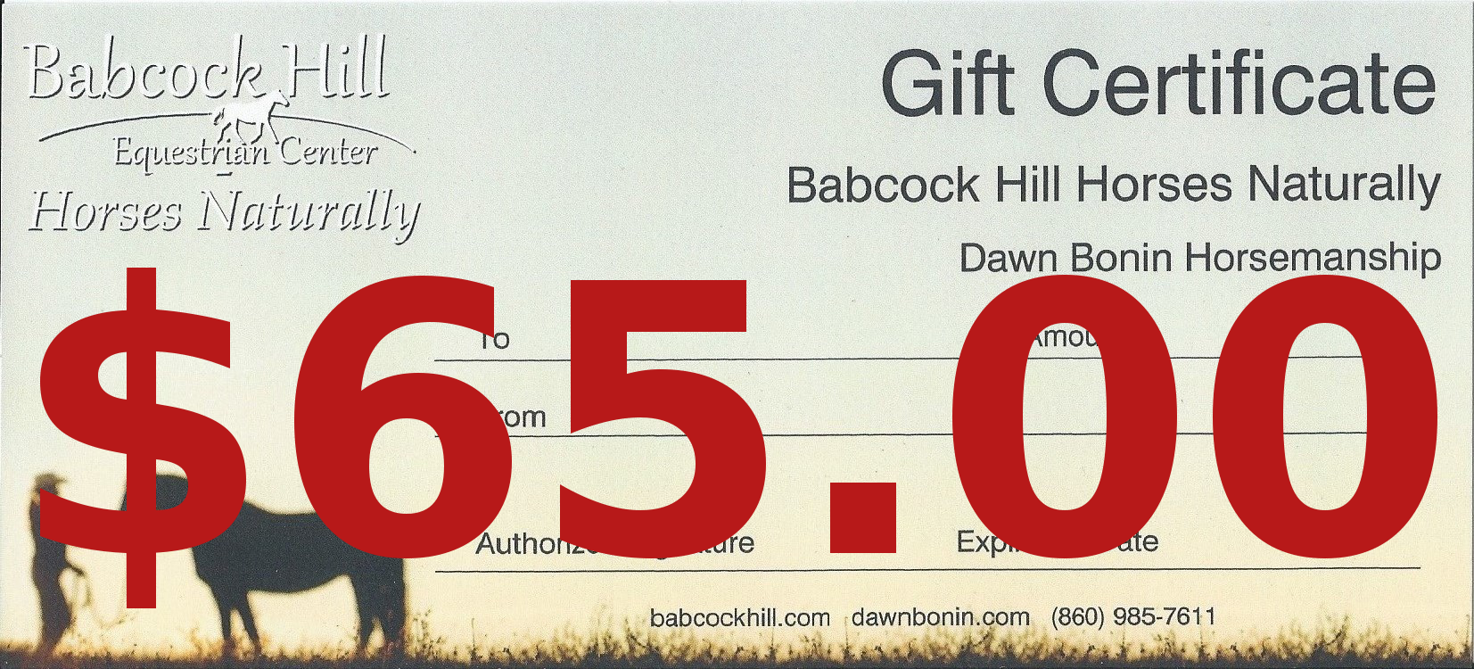 $65 Gift Certificate  - Covers 1 Lesson with Dawn on your own horse