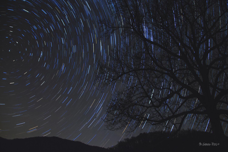 Circular night Smokys.jpg