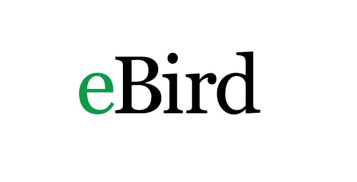 ebird_logo.jpg