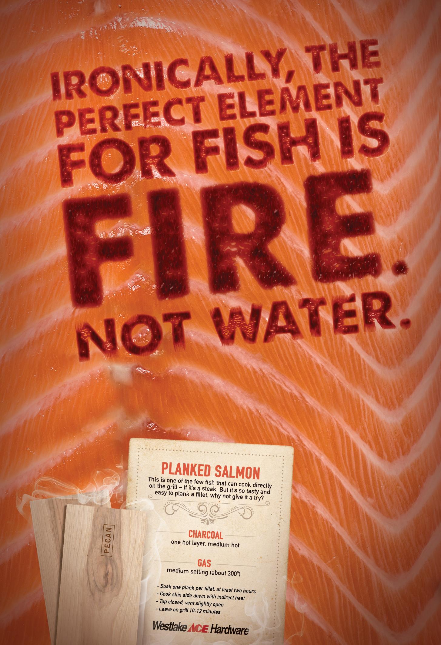 Salmon_Final_052814.jpg