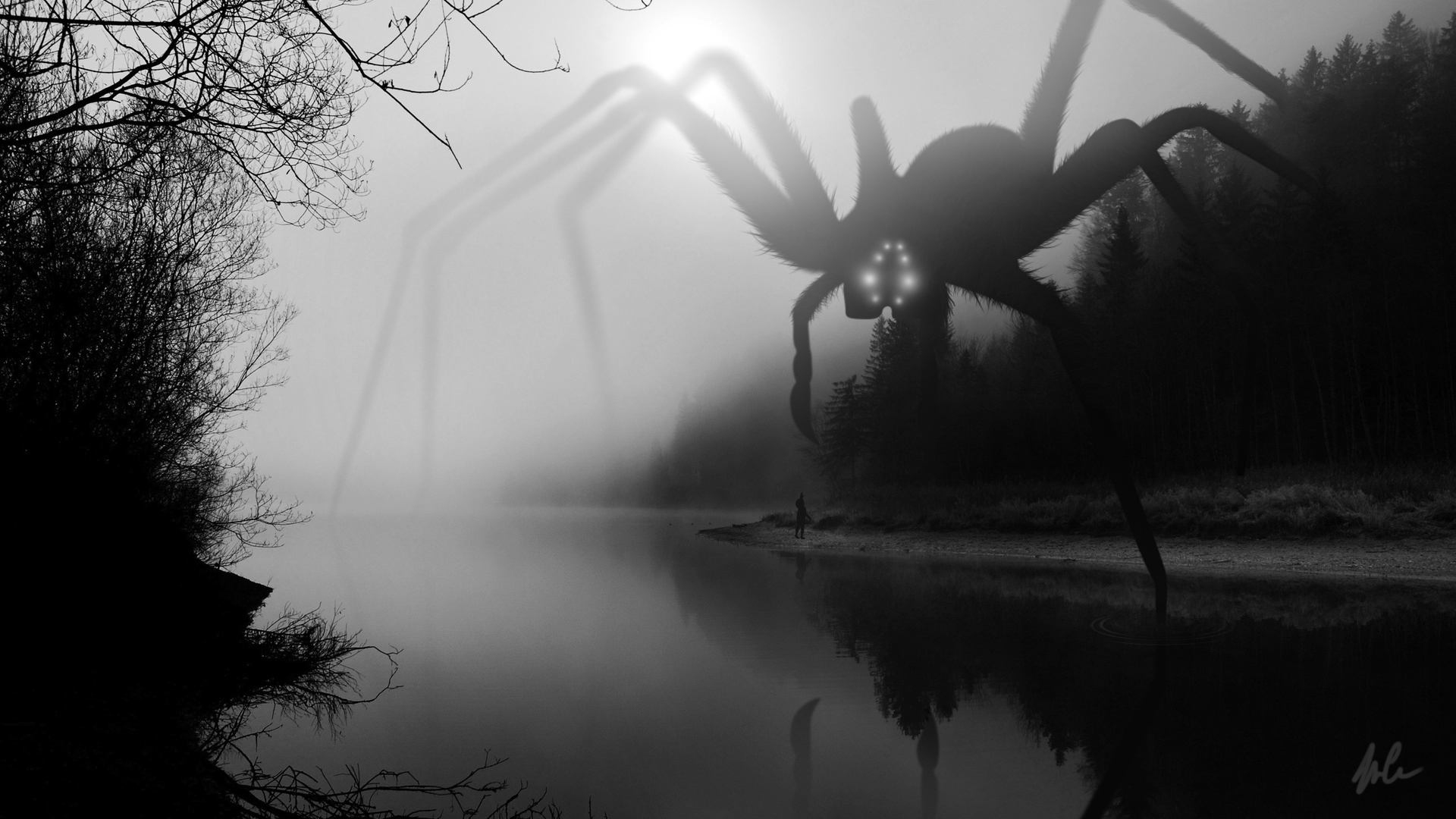 SpiderMist_Hires.jpg