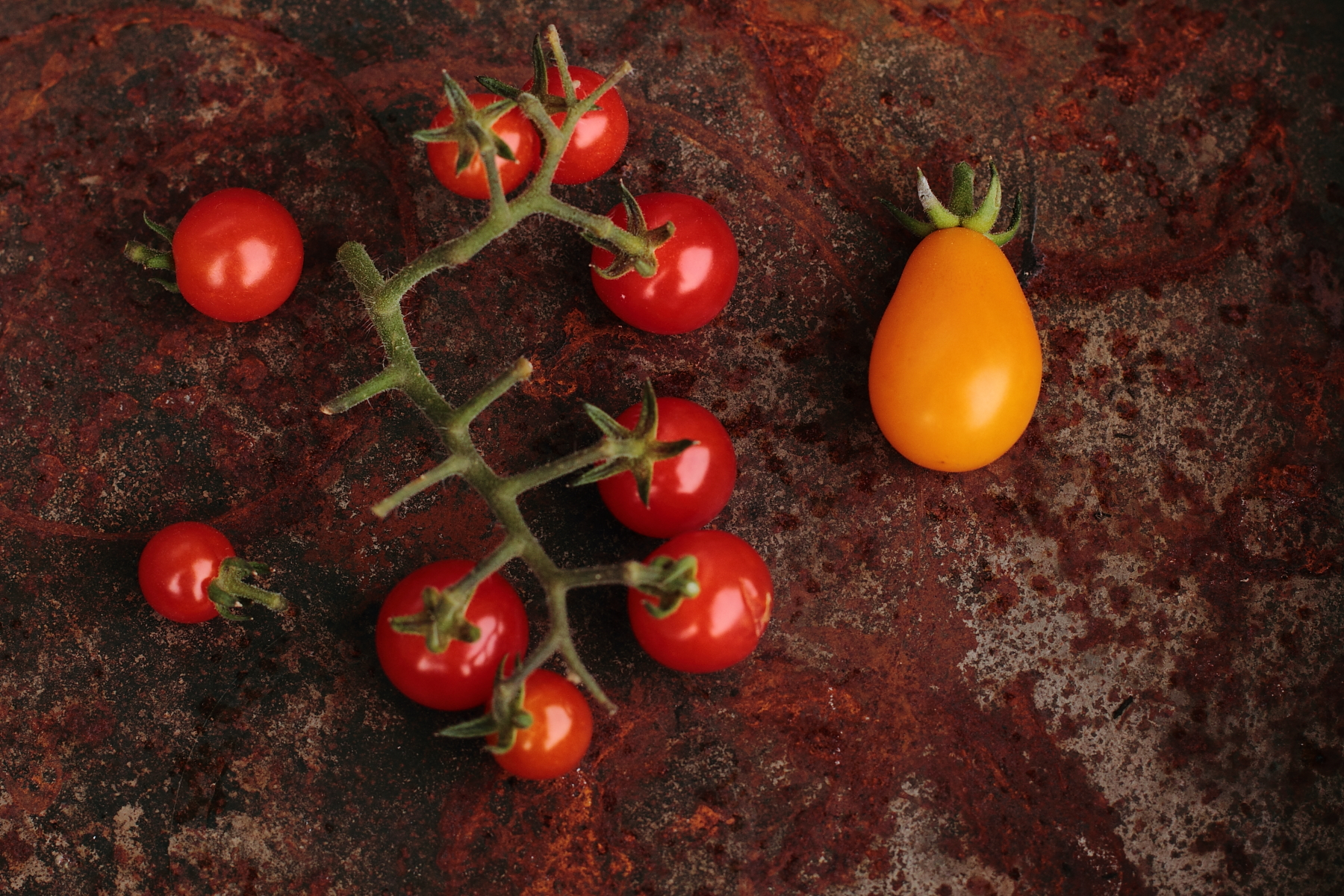 Tomatoes_IMG_5341©2012_HelenaMcMurdo