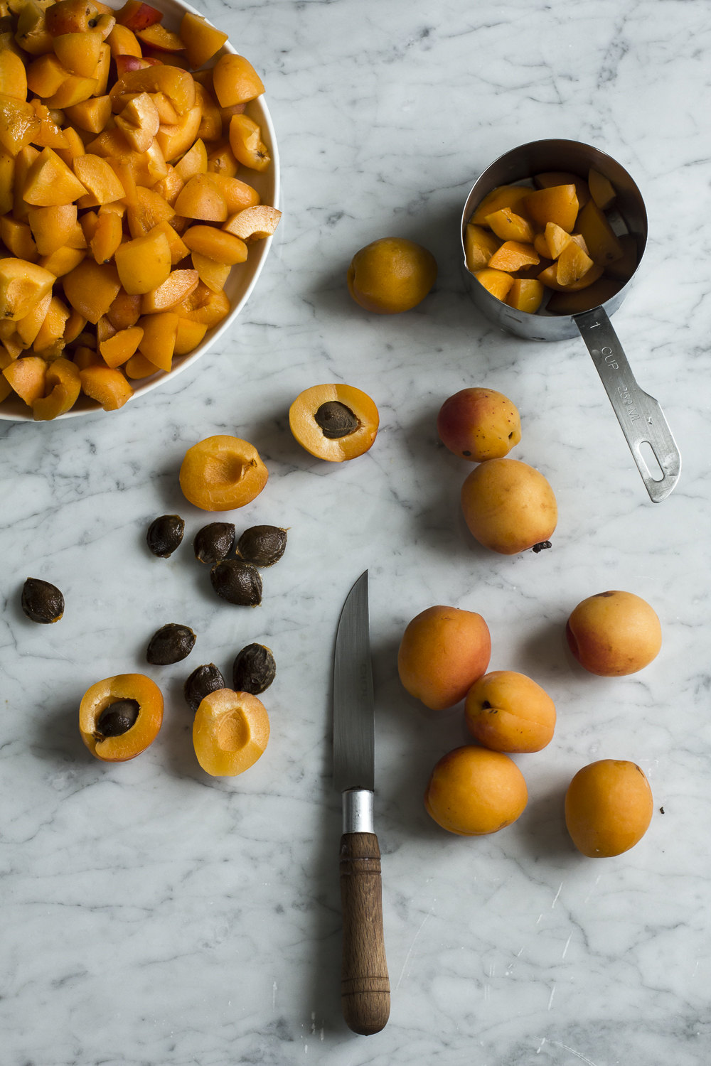 Chopping apricots for Apricot Sultana Chutney  © 2014 Helena McMurdo