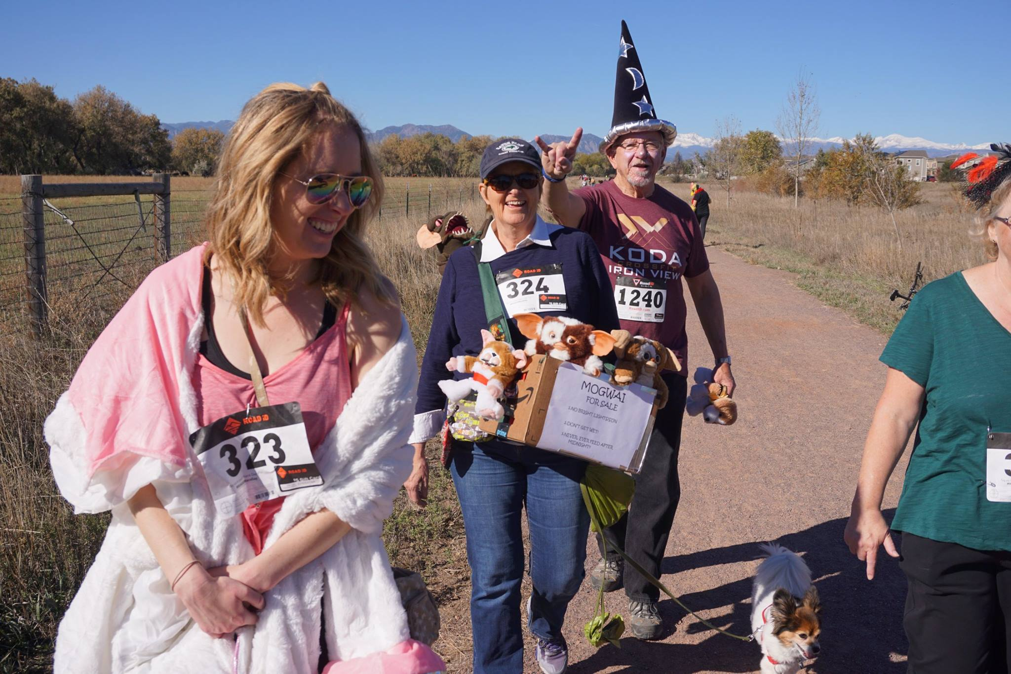Such creative costumes and cute doggies!