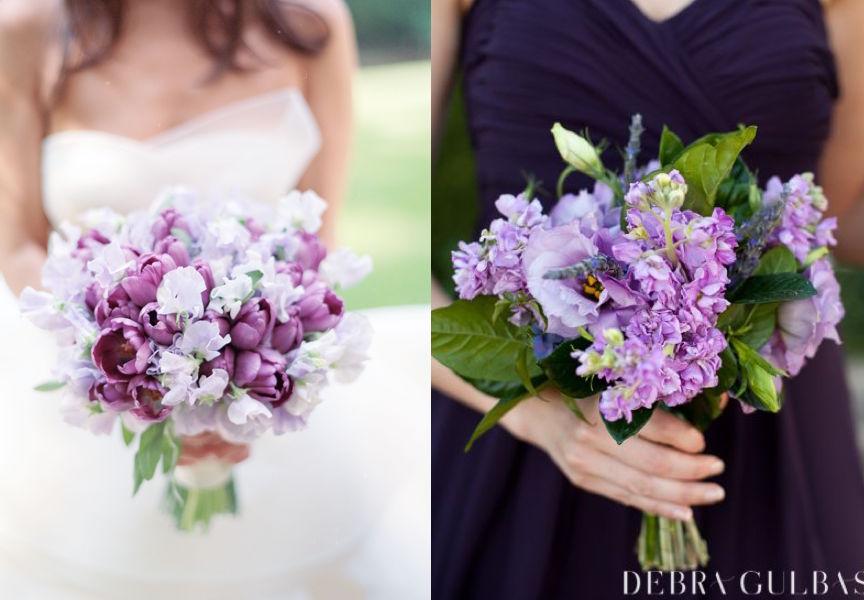Kelli Elizabeth Photography  |  Debra Gulbas Photography