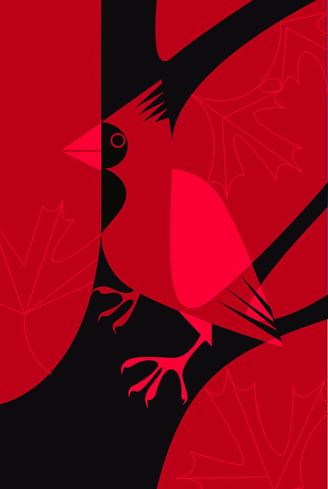 cardinal-big.jpg