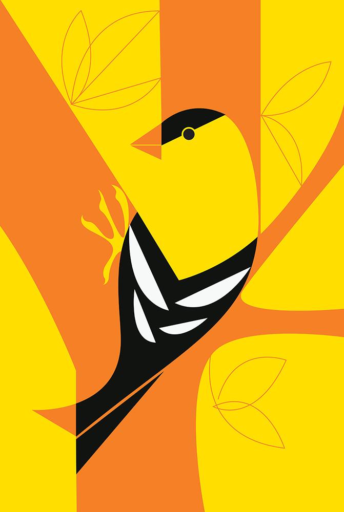 goldfinch-big.jpg
