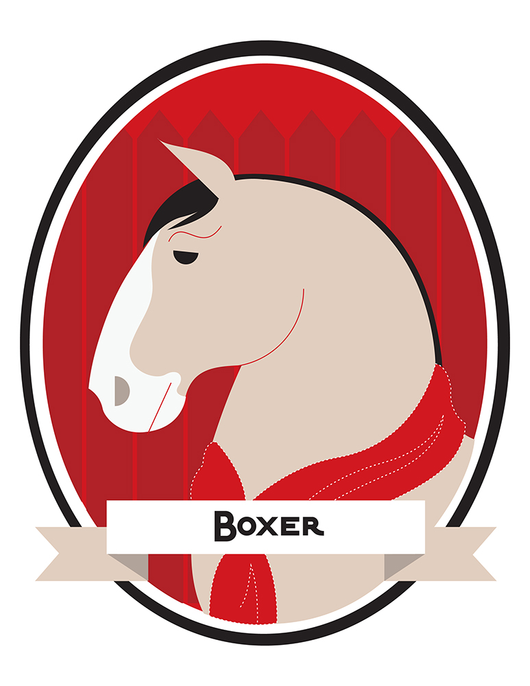 boxer-color.jpg