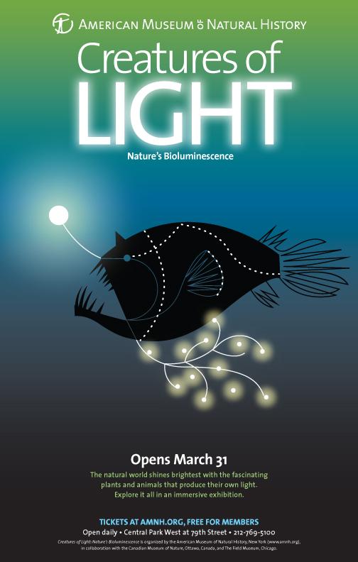 creaturesoflight-anglerfish.jpg