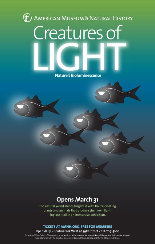 creaturesoflight-hatchetfish.jpg