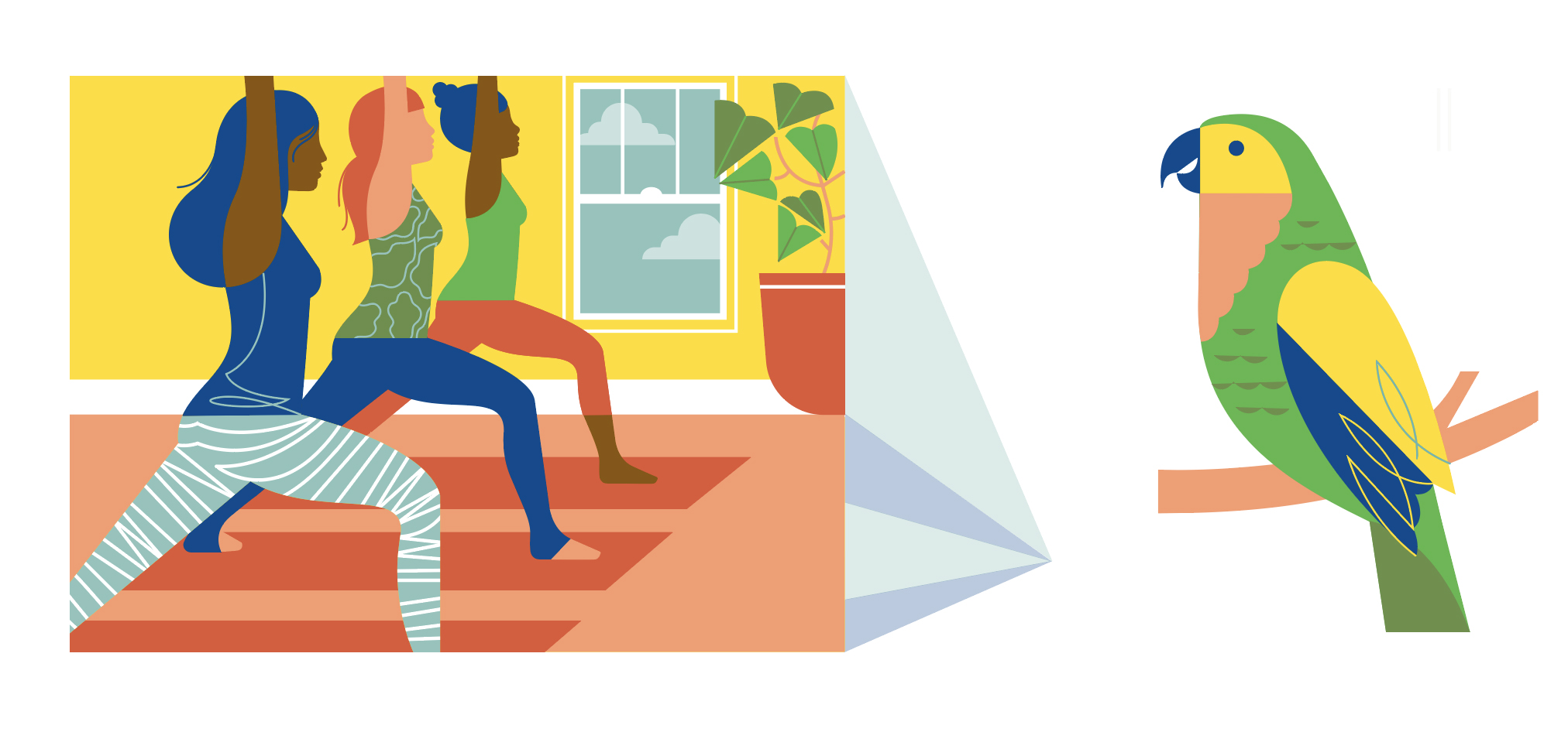 parrot-yogaclass.jpg