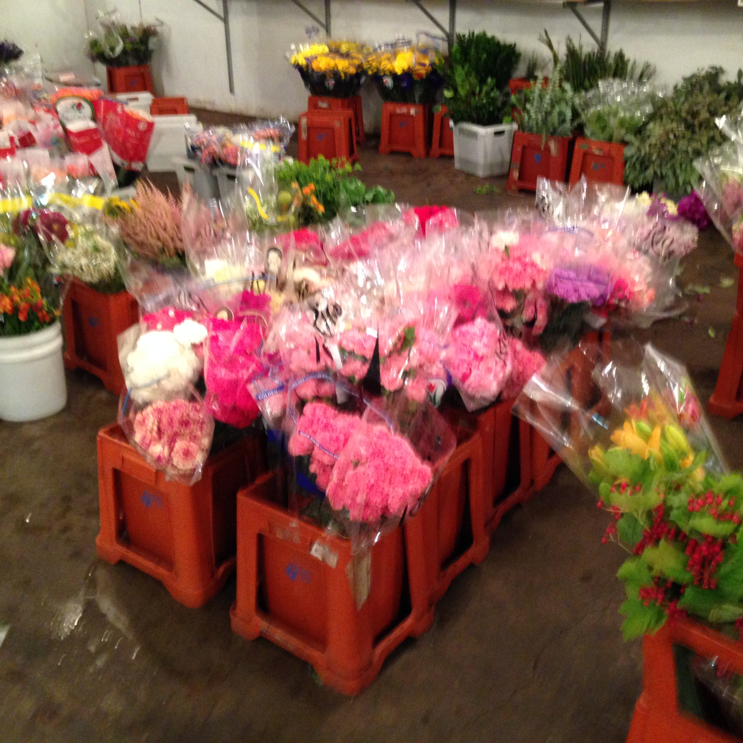 The wholesaler floral company and it's goodies.