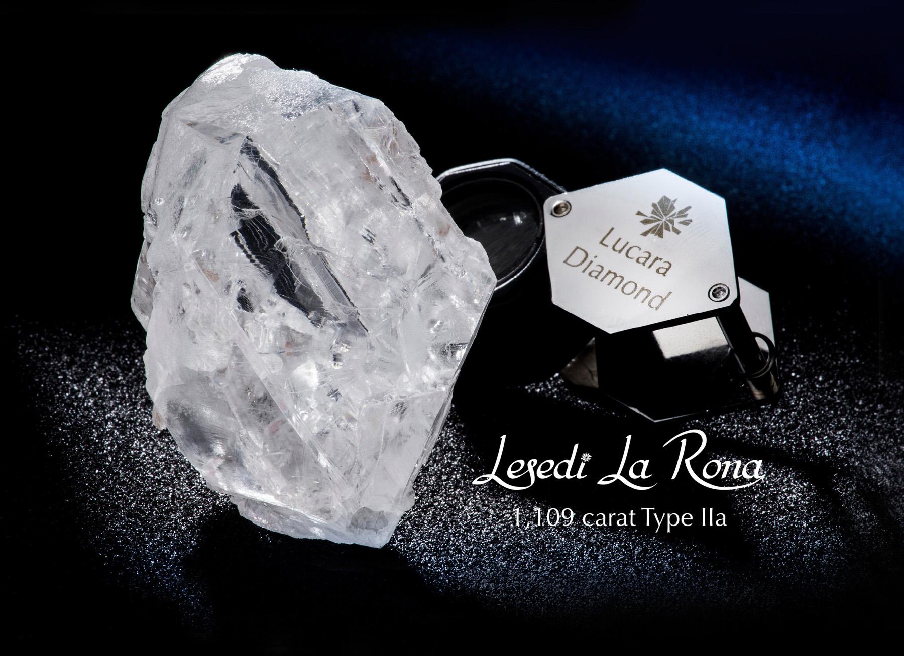Lesedi La Rona with wordmark.jpg