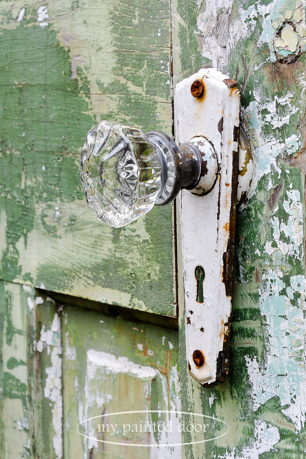 Repurposed doors for your garden - glass doorknobs