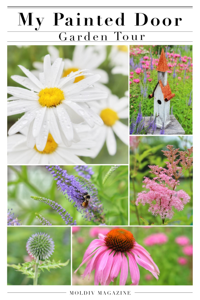 My Painted Door garden tour - photography by Jan Whybourne