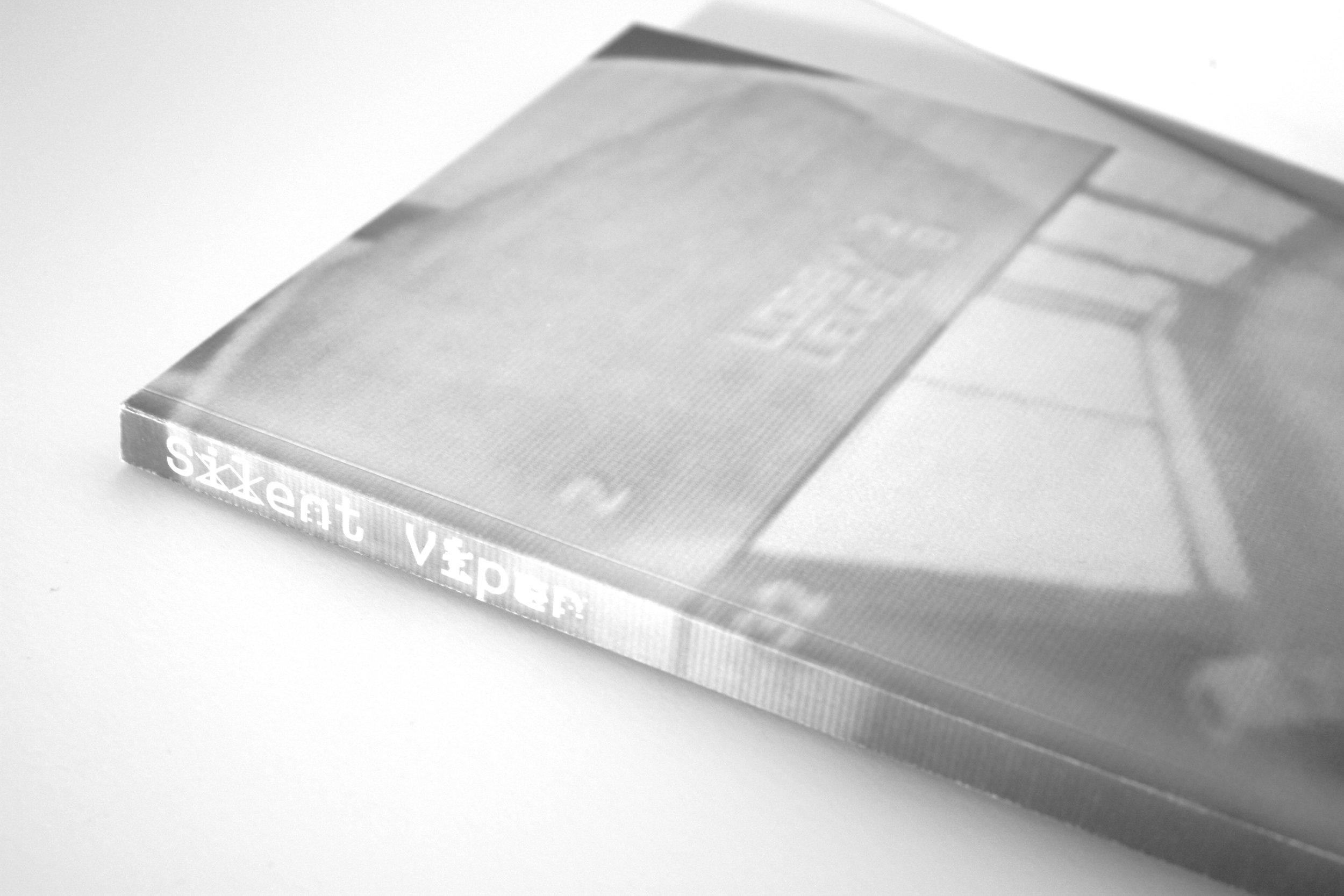 bookcoverZOOM.jpg