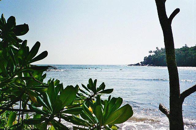 Monday mood 🌴  #srilanka #beach #mood #summer #goodvibes