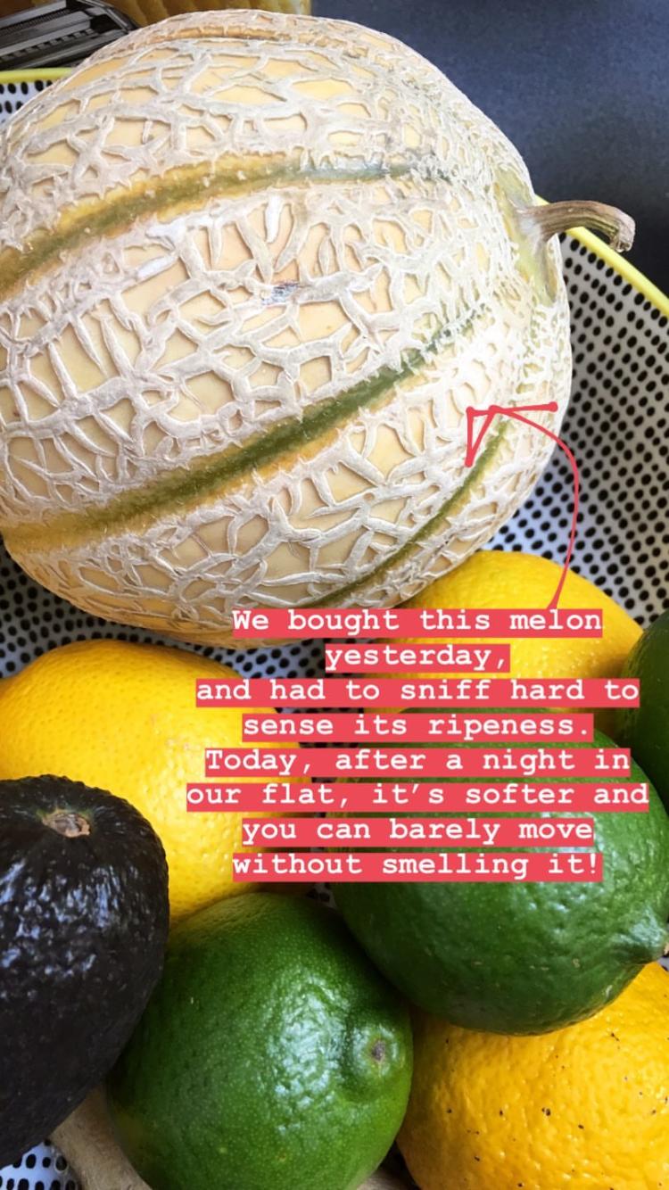 melon-philippa-moore