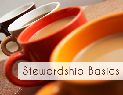stewardship practices to use to take care of your donors.png