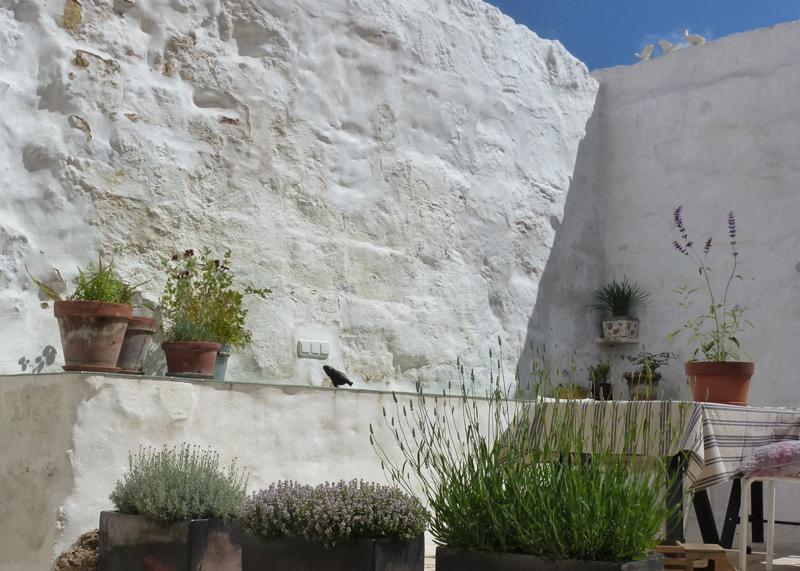 24Hotel Ses Sucreres. Menorca. Patio (3).jpg