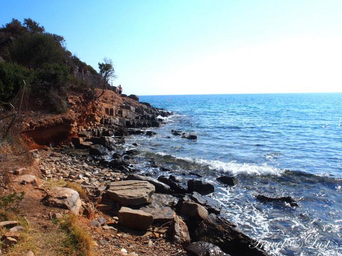 A 'secret' beach behind the Cretan Olive Oil Farm, past the olive trees.