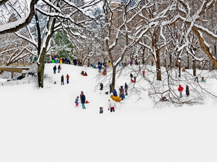 This is one of my favourite images of Winter in New York.I just went out from the gym after a snow storm and all the kids went out to the park with their colourful clothes and slides.I ran home to get my camera right away to capture these kids.