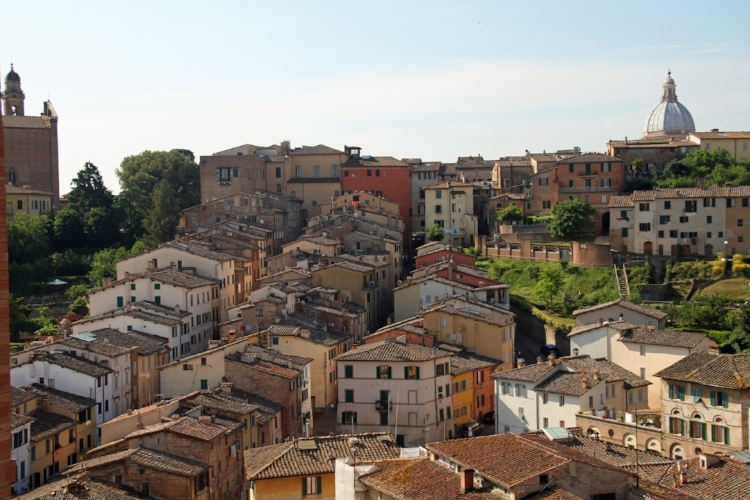 Colourful buildings and rooftops in Siena.