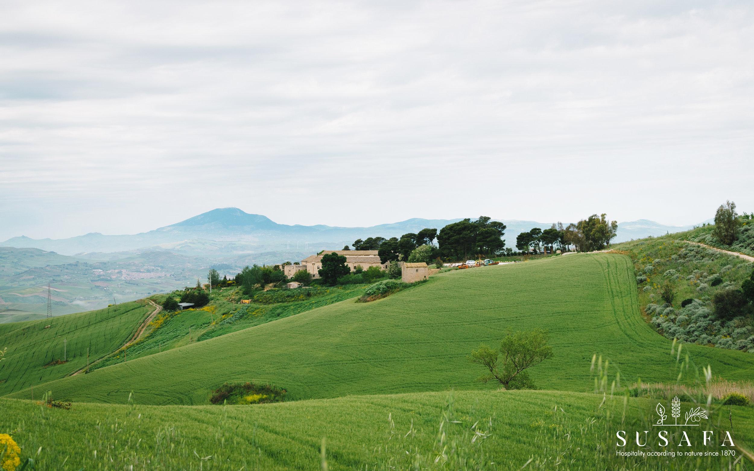 Landscape _DSC6630.jpg