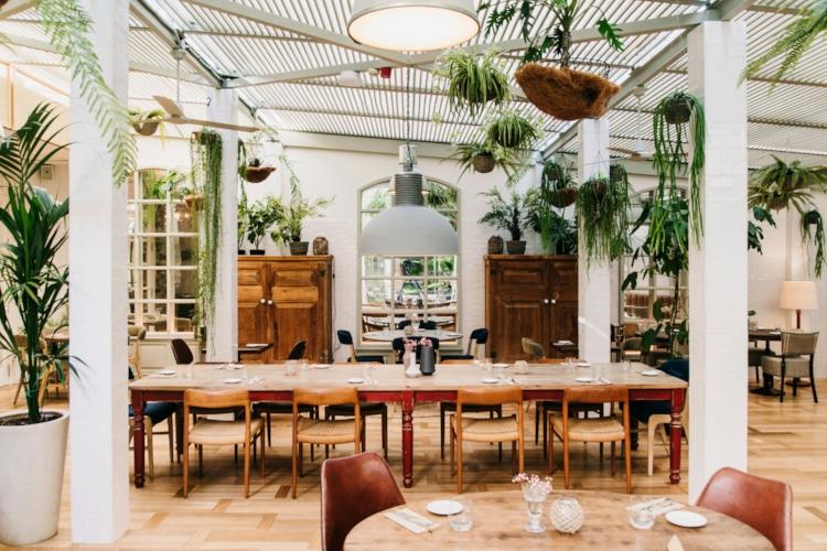 Hotel-Pulitzer-Barcelona-GreenHouse.jpg