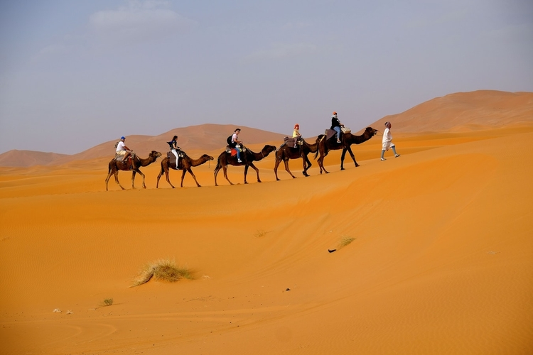 Merzouga, Morocco. Spend a few nights under the stars in the Sahara Desert.