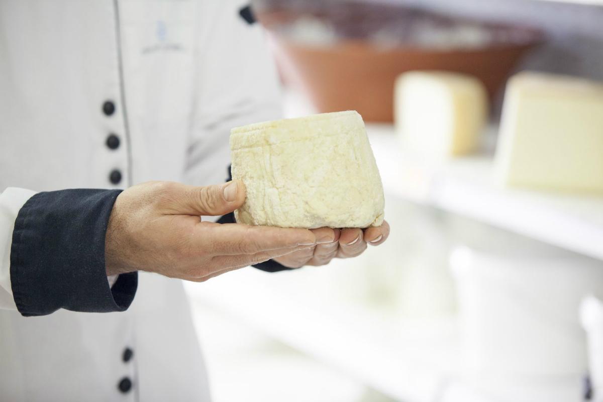 A closeup of typical Cretan cheeses.