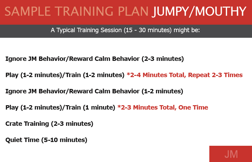 Sample Training Plan JM.jpg