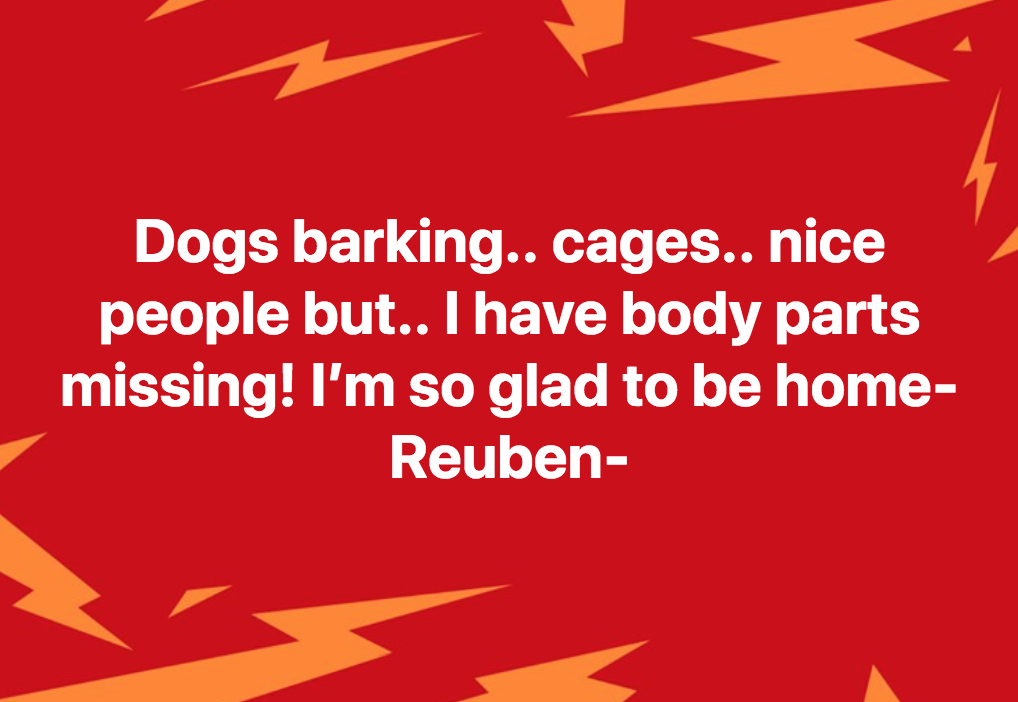 reuben neuter 4.png