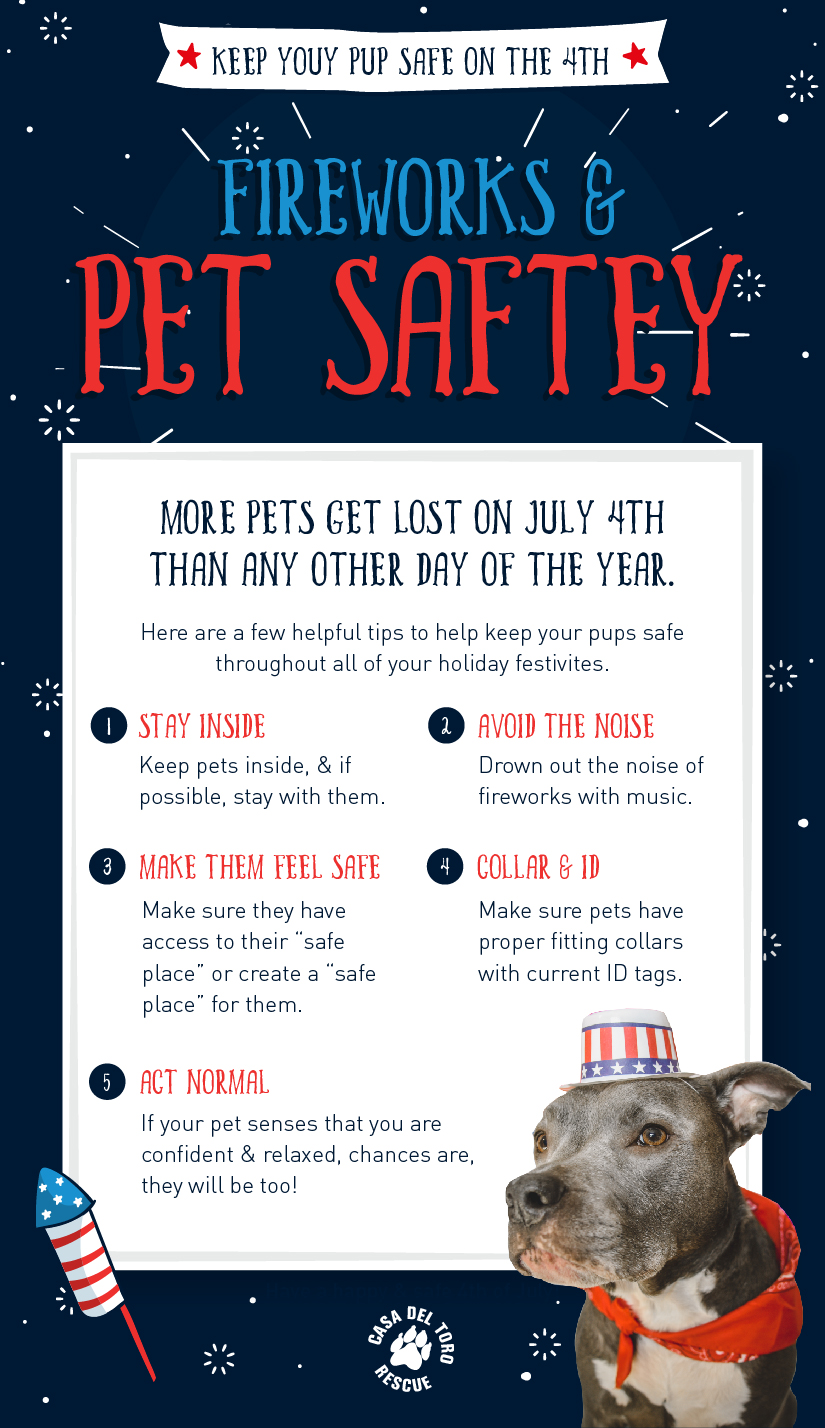 4th of july info graphic.JPG