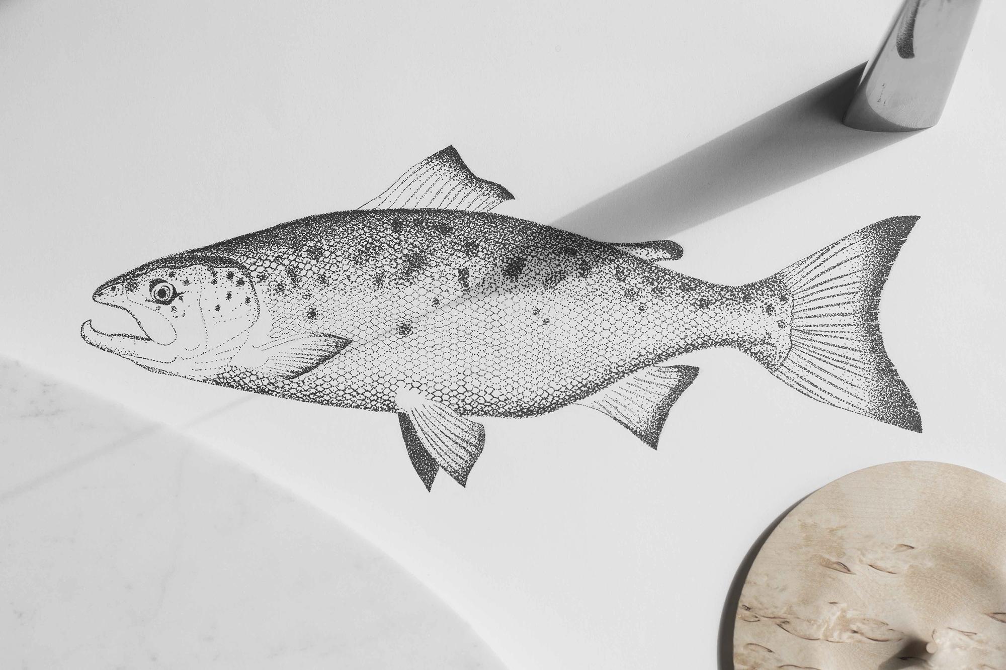 valerianelazard-salmon3-LOW.jpg