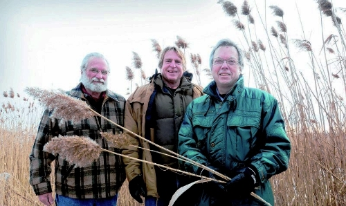 Bryan Eaton/Gloucester Daily Times Newbury Selectman Geoff Walker, left, joins with Merrimack Valley Planning Commission's Peter Phippen and filmmaker Richard Hydren, right, at a stand of phragmites on Ring's Island in Salisbury.