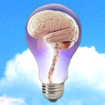 NewsBrain Icon