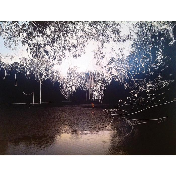 Rosângela Dorázio Horto, 2014 Gravura sobre fotografia 115 x 150 cm