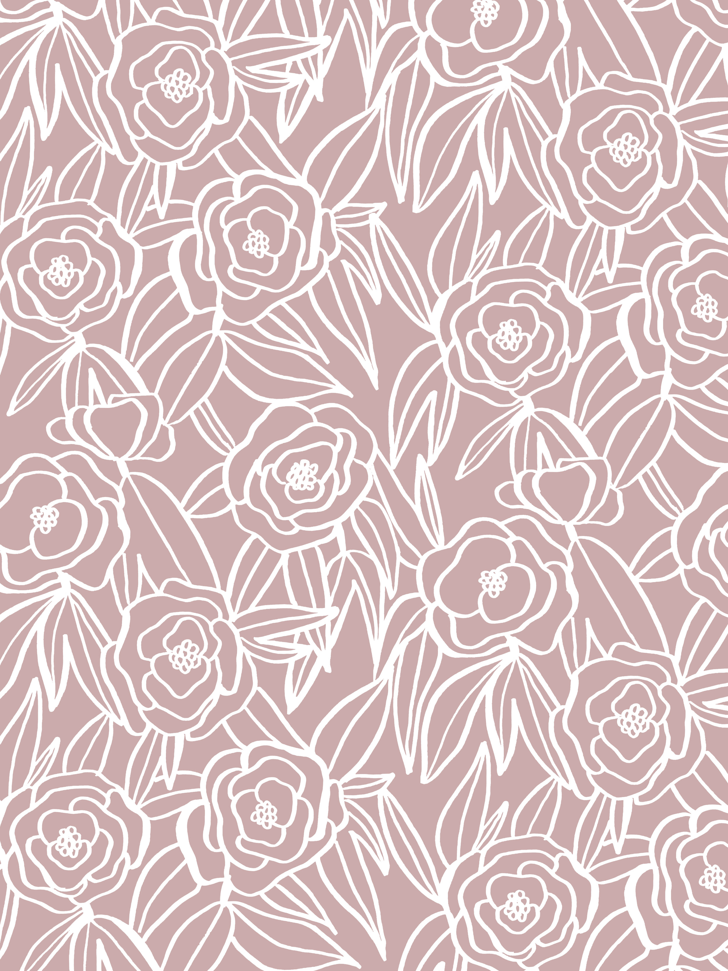 blooms pink background.jpg