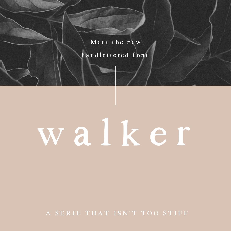 Project:  Walker, a handlettered font   Client:  Self-published on Creative Market   CreativeMarket.com