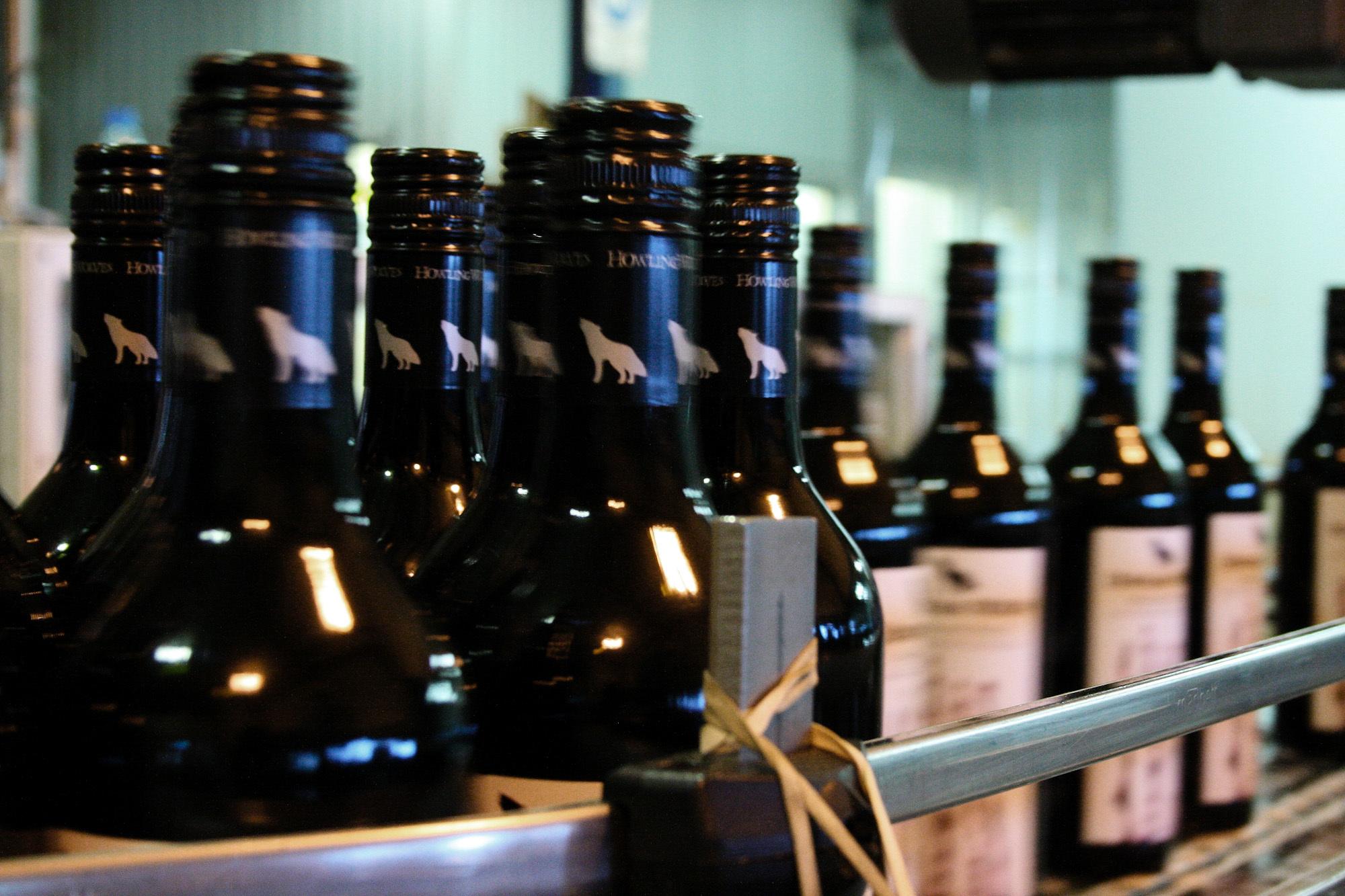 winemaking-5.jpg