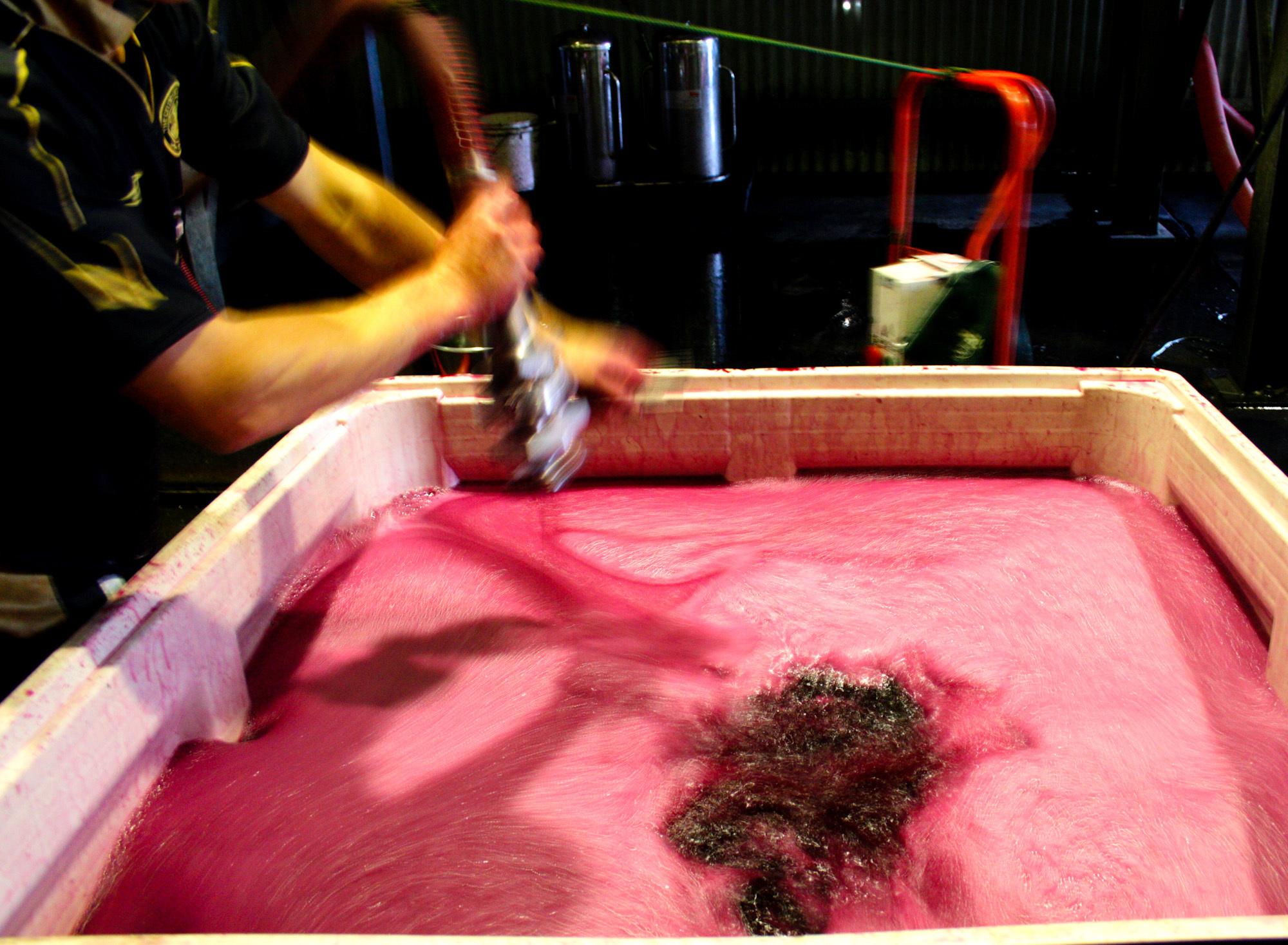 winemaking-9.jpg